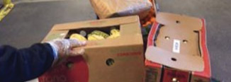 Photo of a person handling boxes full of food at a food bank.