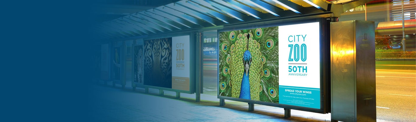 Light up kiosks at bus stop with zoo ad